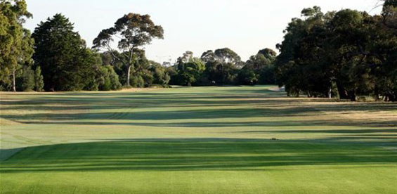 Golf Courses Around the Peninsula Area